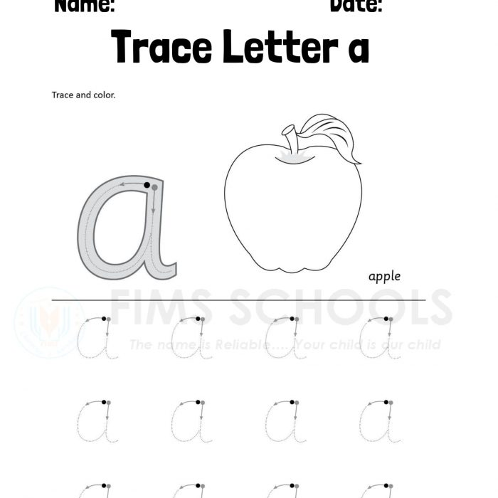 Fims Tracing Worksheets