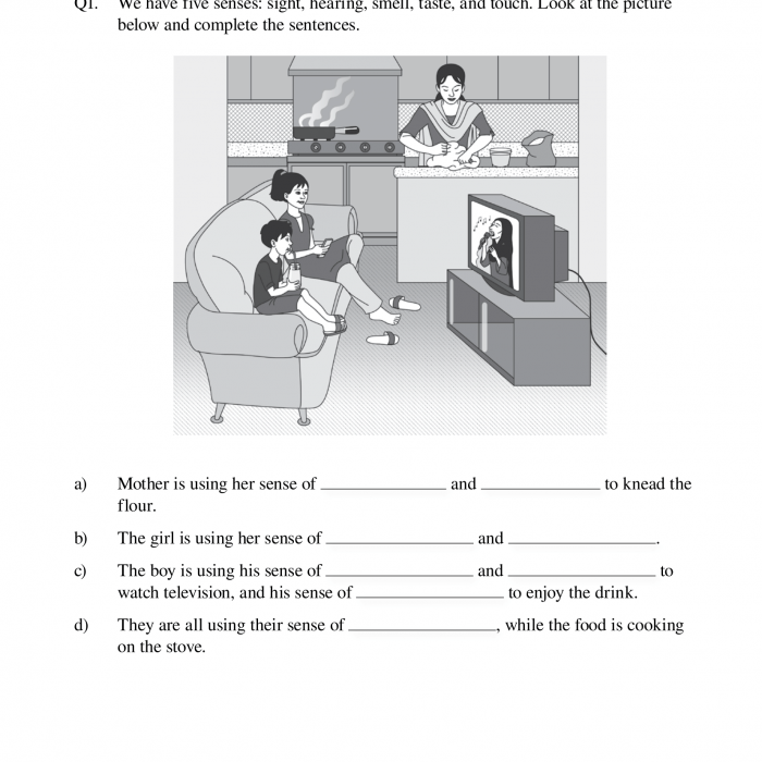 The Senses  Worksheets